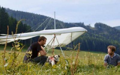 Bekijk Amstelfilm online